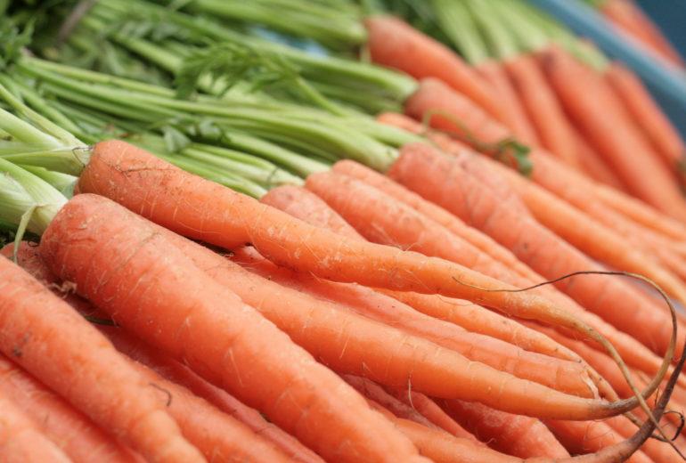Per saperne di più: le carote