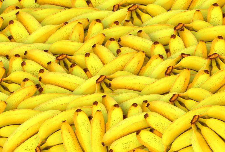 Per saperne di più: la banana